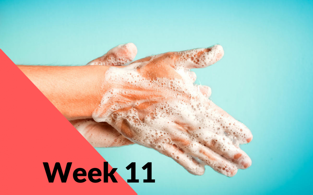 Week 11: Don't Panic. Here is what I think we all should be doing… Washing our hands regularly!